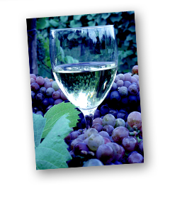 Wineries in Washington County
